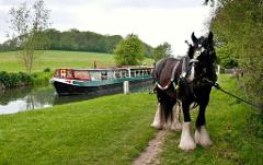 Horse Drawn Canal Boat & Marlborough - Tue 24th April 2018