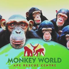 Monkey World - Mon 6th Aug 2018