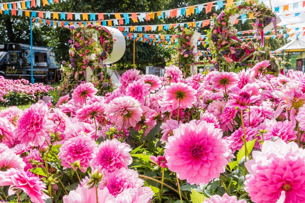 RHS Hampton Court Palace Garden Festival - Fri 9th July 2021