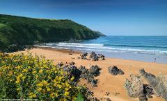 Springtime In North Devon - Mon 24th Feb 2020