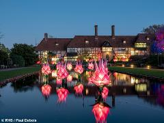 RHS Wisley Gardens Glow Illuminations - Wed 11th Dec 2019