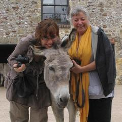 Sidmouth & The Donkey Sanctuary - Tue 2nd Oct 2018