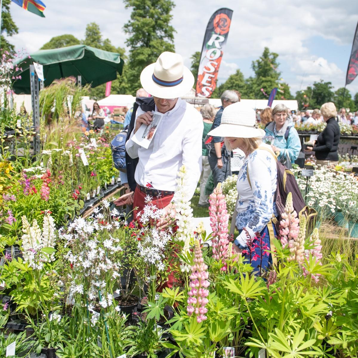 Blenheim Palace Flower Show - Fri 25th June 2021
