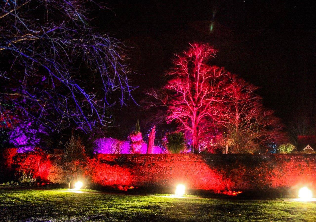 Leonardslee Garden Illuminations, West Sussex  - Thu 19th Dec 2019