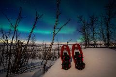 Aurora Snowshoeing