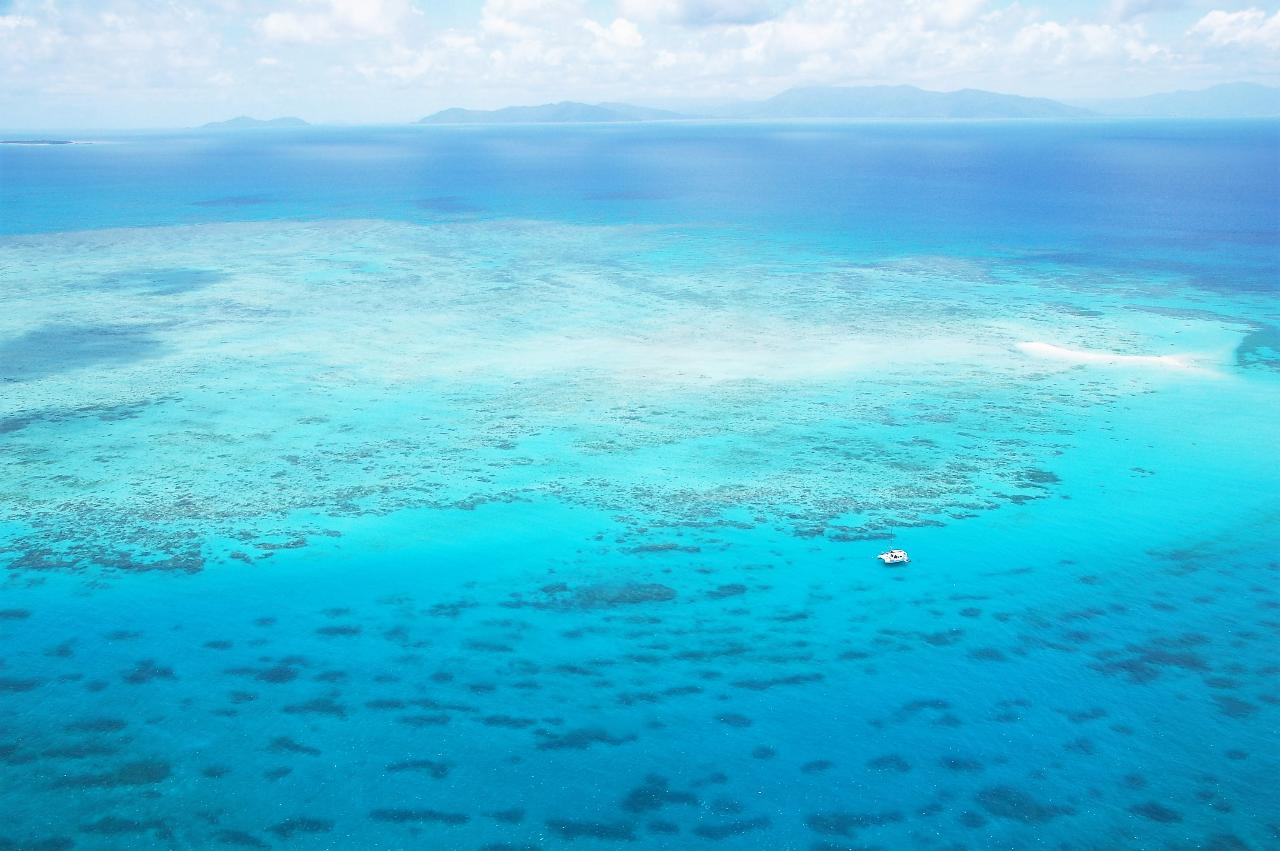 WOW Great Barrier Reef - 60mins