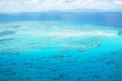 WOW Great Barrier Reef - 60mins