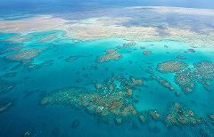 WOW Great Barrier Reef - 45mins