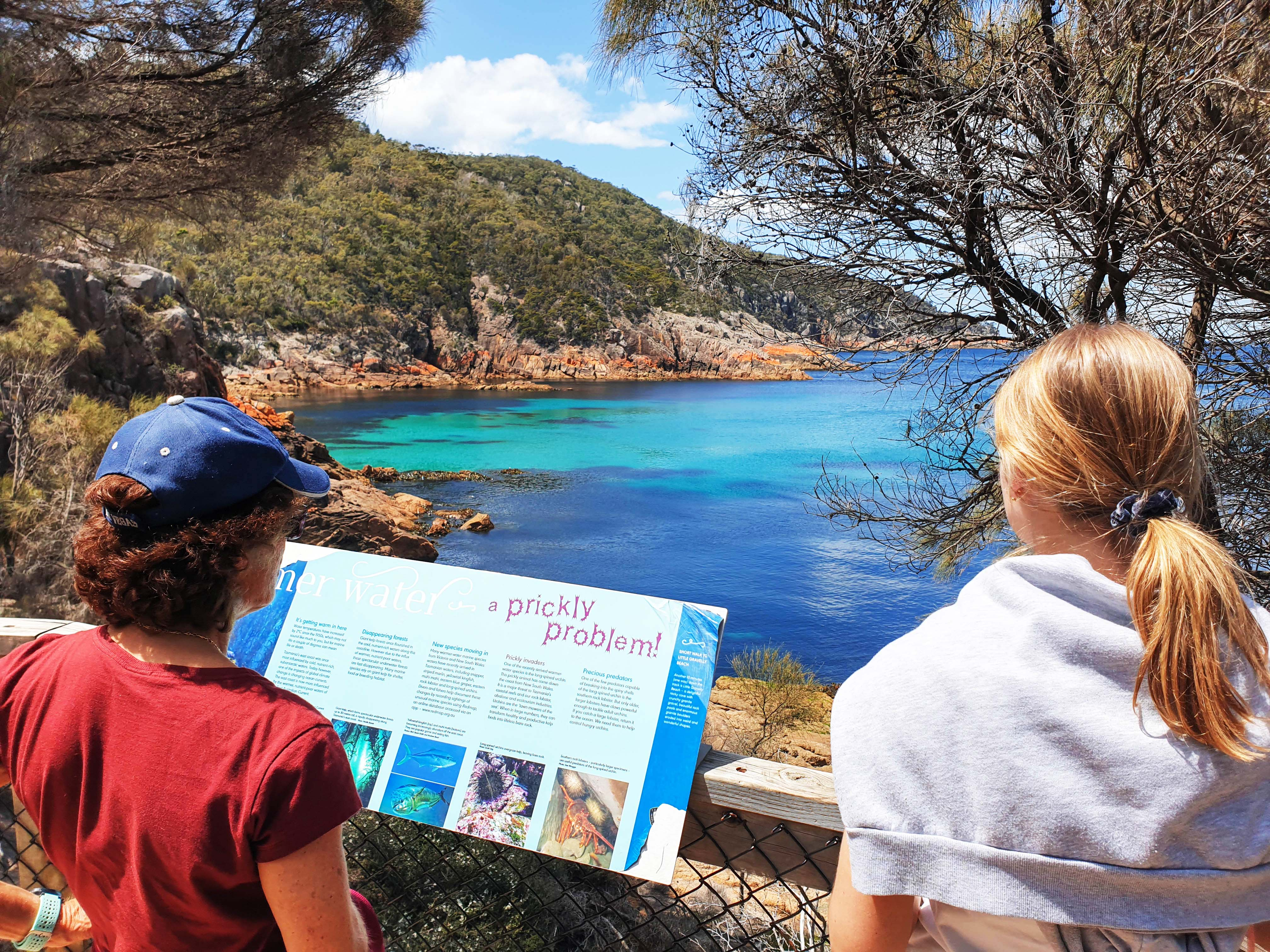 Wineglass Bay & Freycinet Day Tour from Hobart