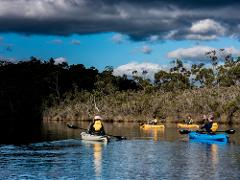 Huon River Twilight Tour