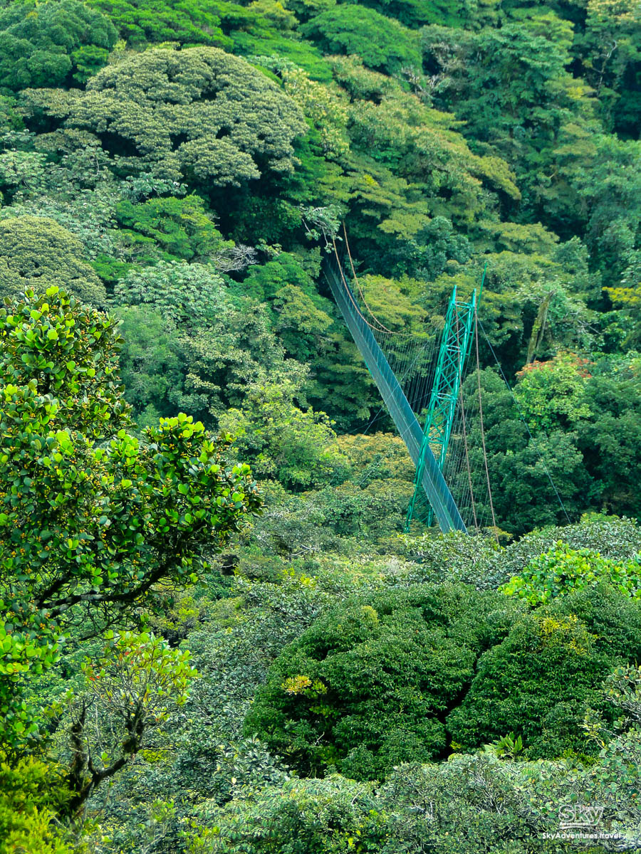 Hanging Bridges  SKY WALK guided Tour