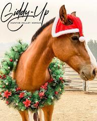 Christmas Photo with Barney