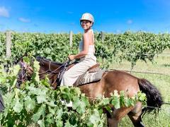 1-hour Private Horseback Vineyard Trail Ride