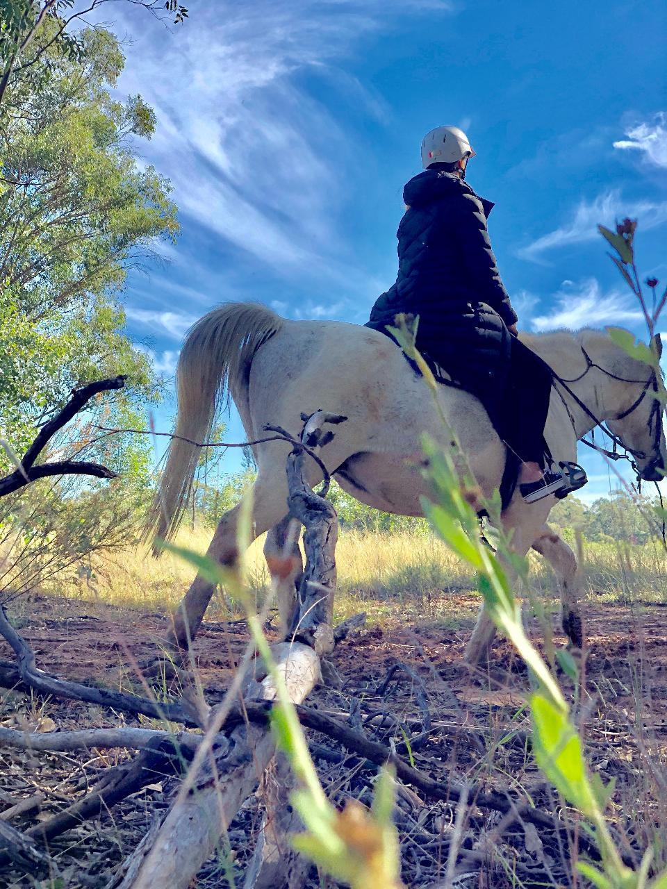 2-hour Private Horseback Vineyard Trail Ride