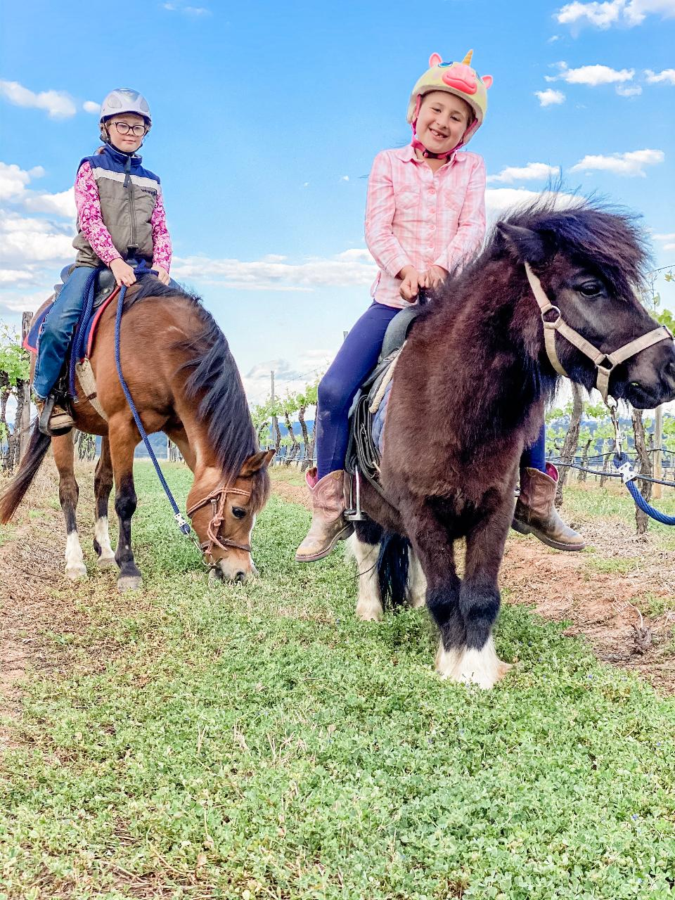 20-minute Child Lead Vineyard Pony Trek