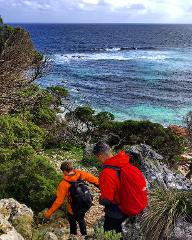 Cape to Cape 8 Day Guided Walk