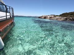 2 Hour Summer Sea Safari (Nov - Apr) around King George Sound