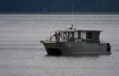 Whale Watch Charter