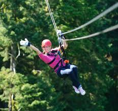 .Bear Creek Zipline - Ketchikan