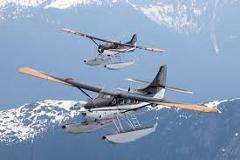 Juneau Private Custom Flightseeing