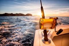 PJs Deep Sea Fishing Charter 4 Hours Private Hire Up to 4 persons