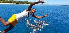 Sail Away to Paradise PJ's Sailing Beachcomber Island Day Trip