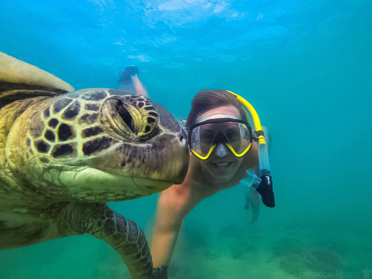 Ultimate Whitehaven Beach, Snorkel & Guided e-Mountain Bike Whitsunday Island Experience