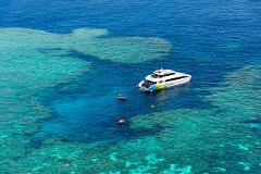 Explore - Outer Great Barrier Reef Snorkel