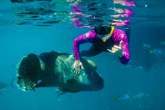 Explore - Snorkel Tour