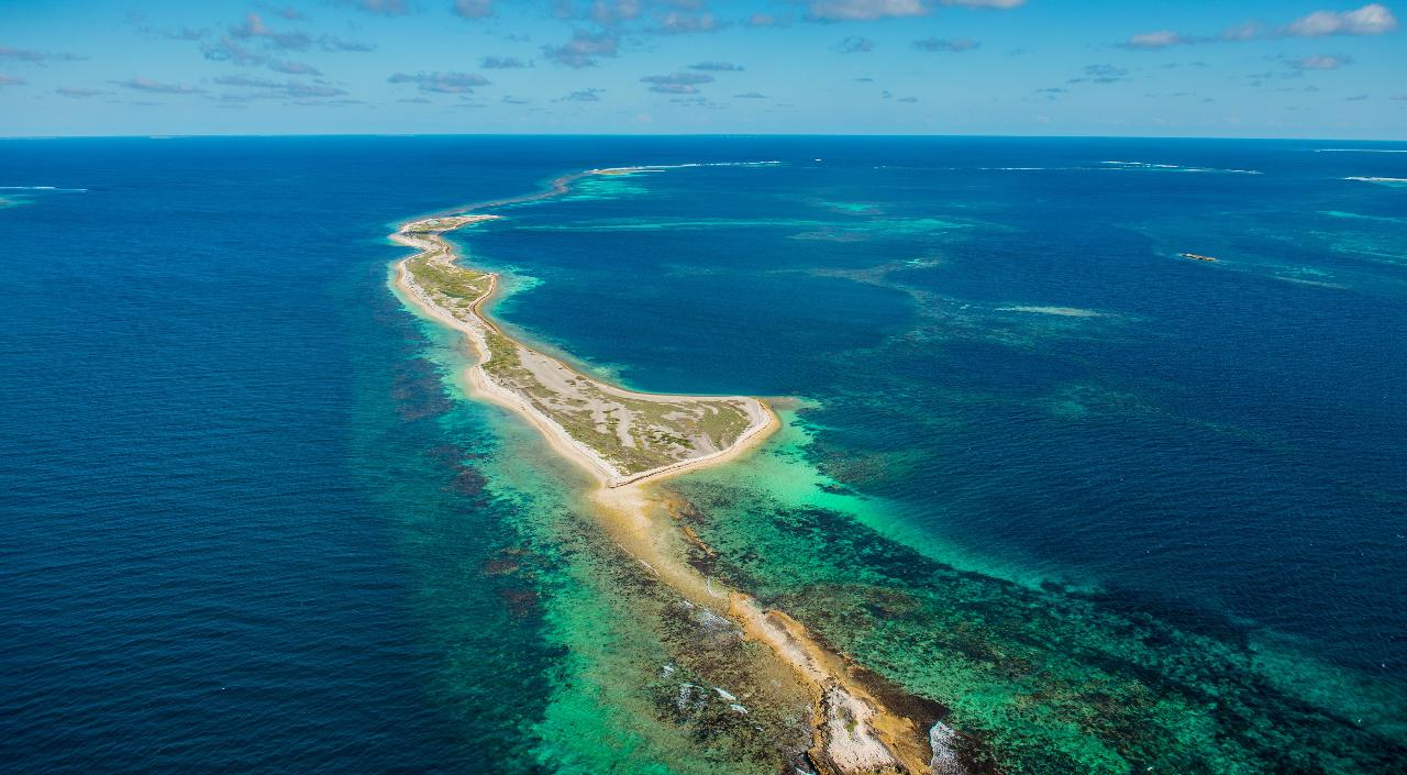 Abrolhos Island Discovery Tour