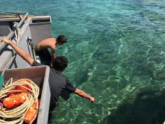 Abrolhos Islands Fly & Float Tour