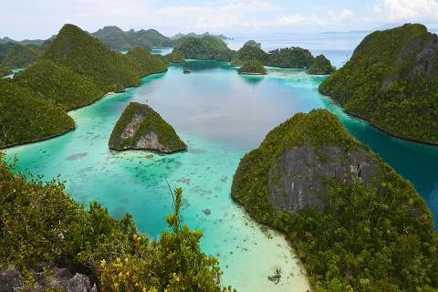 Raja Ampat, Whales, Dolphins, Snorkelling and Diving Expedition