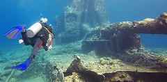 Dive Camp - Reef Rangers