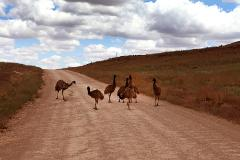 A Taste of the Outback and Wine - 3 Days/2nights