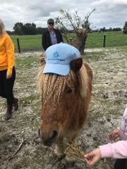 Full Day Orchard, Aussie Farm & Mandurah Tour