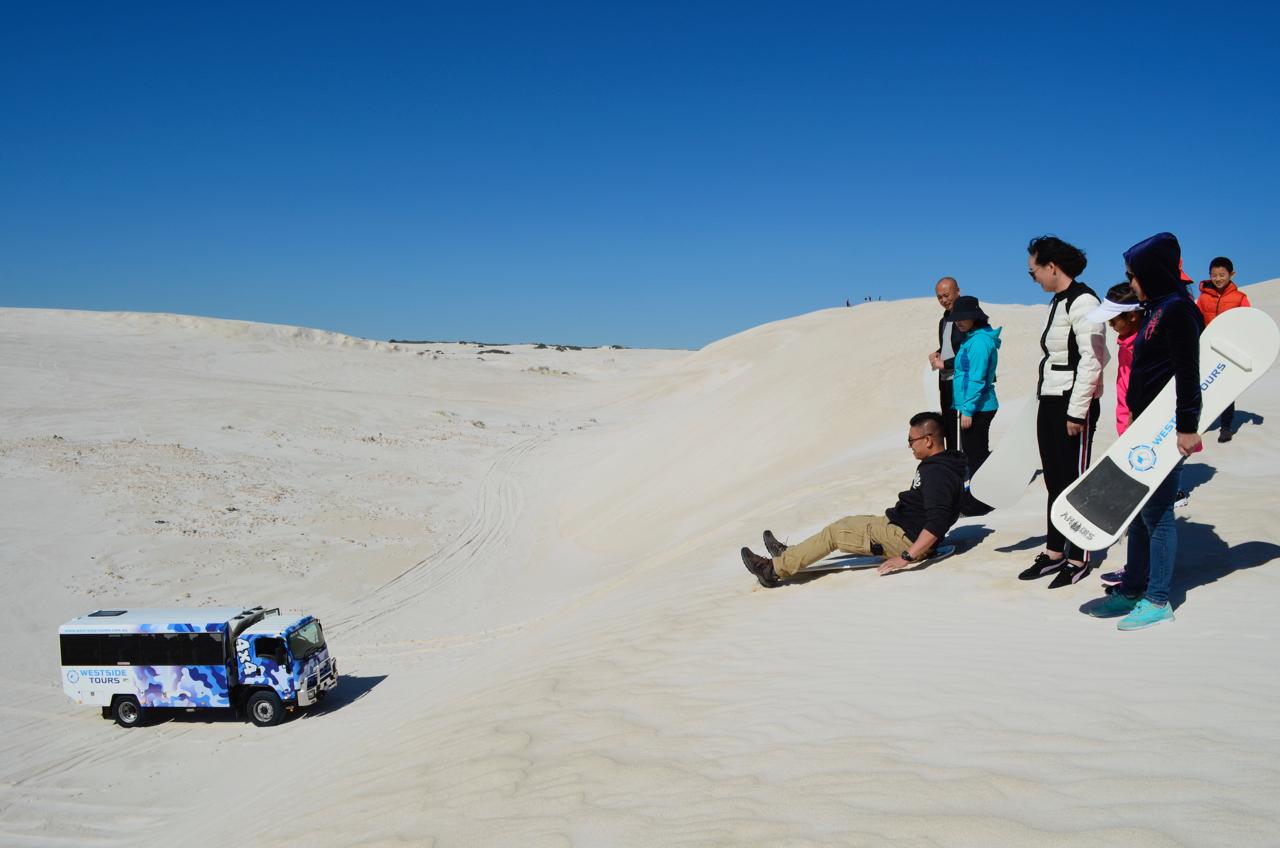 Full Day Pinnacles, Lancelin 4WD Sandboarding & Koalas Tour