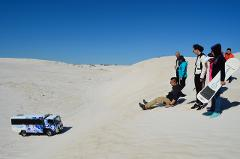 Full Day Pinnacles, Lancelin 4WD Sandboarding & Koalas Tour