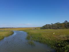 Satilla River - Guide Only