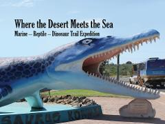 Where the DesertMeets the Sea