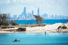 Day Tour: Gold Coast Highlights - 3 hours