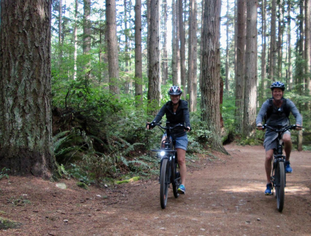 Beyond City Sights E-Bike Adventure Tour - Self-Guided