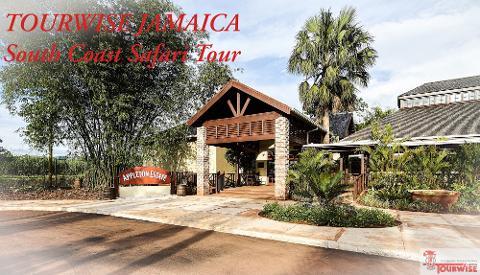South Coast Safari - Black River, YS Falls & the Joy Spence Appleton Rum Estate (From Negril)