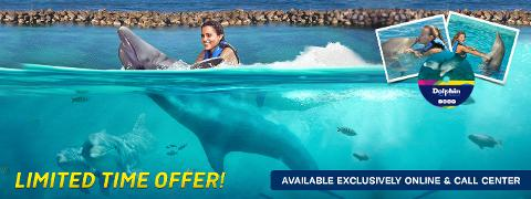 Dolphin Cove Montego Bay Swim Adventure (From Negril)