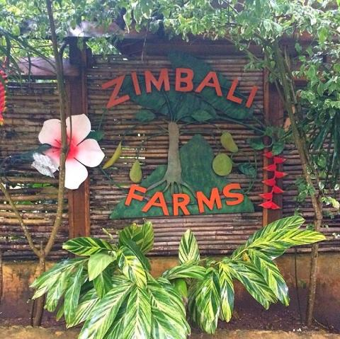 Zimbali (From Negril)