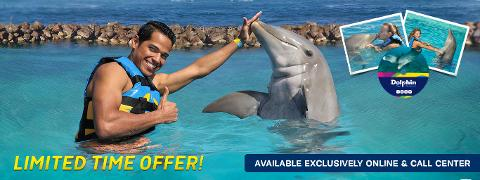 Dolphin Cove Encounter in Ocho Rios (From Runaway Bay)