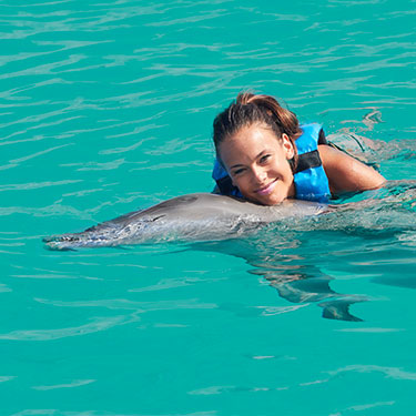 Dolphin Cove Encounter in Ocho Rios (From Negril)
