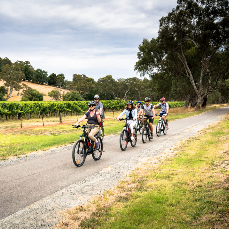 Amy Gillett Bike Hire