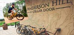 Fox Creek Mountain Biking Twilight tour