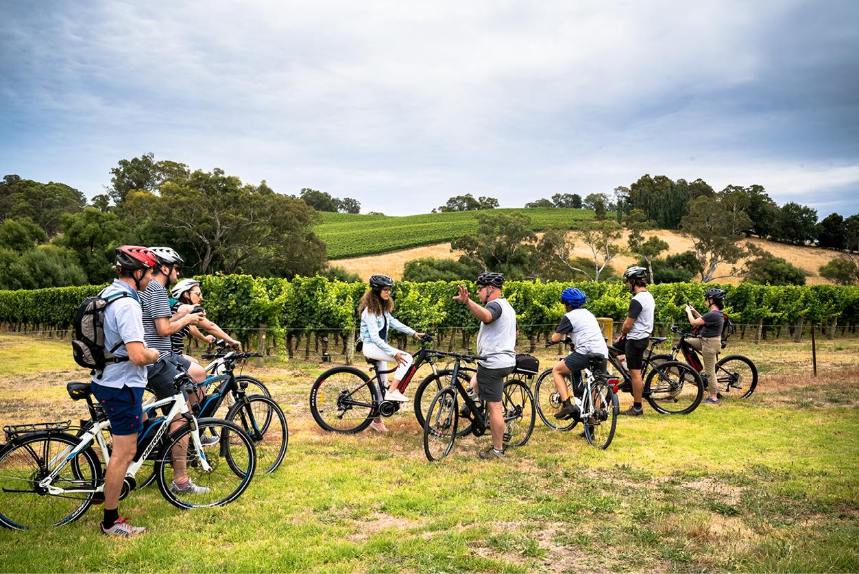 Wheels, Wine & Wildlife