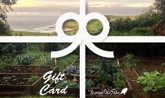Gift Card $100 Buena Vista Farm